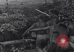 Image of Luftwaffe aircraft operations Eastern Front, 1941, second 17 stock footage video 65675041021