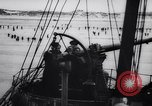 Image of evacuation following Battle of Dunkirk Dunkirk France, 1940, second 46 stock footage video 65675041166