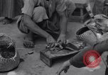 Image of Oasis Iran, 1944, second 19 stock footage video 65675041200