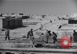 Image of Oasis Iran, 1944, second 20 stock footage video 65675041200