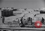 Image of Oasis Iran, 1944, second 21 stock footage video 65675041200
