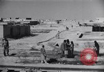 Image of Oasis Iran, 1944, second 22 stock footage video 65675041200