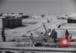 Image of Oasis Iran, 1944, second 24 stock footage video 65675041200