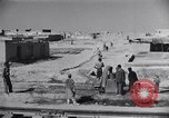 Image of Oasis Iran, 1944, second 26 stock footage video 65675041200