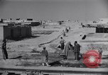 Image of Oasis Iran, 1944, second 27 stock footage video 65675041200