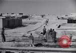 Image of Oasis Iran, 1944, second 28 stock footage video 65675041200