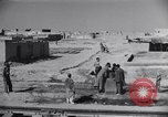 Image of Oasis Iran, 1944, second 31 stock footage video 65675041200