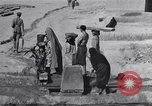Image of Oasis Iran, 1944, second 32 stock footage video 65675041200