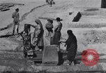 Image of Oasis Iran, 1944, second 33 stock footage video 65675041200