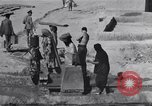 Image of Oasis Iran, 1944, second 34 stock footage video 65675041200