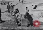 Image of Oasis Iran, 1944, second 36 stock footage video 65675041200