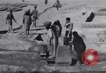 Image of Oasis Iran, 1944, second 38 stock footage video 65675041200