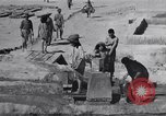 Image of Oasis Iran, 1944, second 39 stock footage video 65675041200