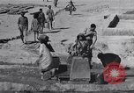 Image of Oasis Iran, 1944, second 40 stock footage video 65675041200