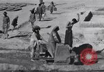 Image of Oasis Iran, 1944, second 43 stock footage video 65675041200