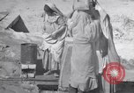 Image of Oasis Iran, 1944, second 46 stock footage video 65675041200