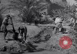 Image of Engineers Iran, 1944, second 15 stock footage video 65675041205