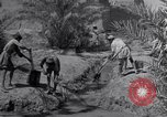 Image of Engineers Iran, 1944, second 16 stock footage video 65675041205