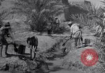 Image of Engineers Iran, 1944, second 17 stock footage video 65675041205