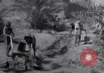 Image of Engineers Iran, 1944, second 18 stock footage video 65675041205