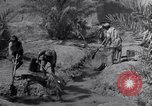 Image of Engineers Iran, 1944, second 20 stock footage video 65675041205