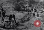 Image of Engineers Iran, 1944, second 25 stock footage video 65675041205