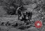 Image of Engineers Iran, 1944, second 41 stock footage video 65675041205