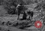 Image of Engineers Iran, 1944, second 42 stock footage video 65675041205