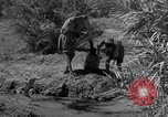 Image of Engineers Iran, 1944, second 43 stock footage video 65675041205