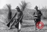 Image of 24th Infantry Regiment during Mexican Expedition Mexico, 1916, second 27 stock footage video 65675041208