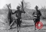 Image of 24th Infantry Regiment during Mexican Expedition Mexico, 1916, second 34 stock footage video 65675041208