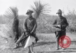 Image of 24th Infantry Regiment during Mexican Expedition Mexico, 1916, second 35 stock footage video 65675041208