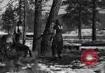 Image of tree cutting contest Luther Washington USA, 1935, second 13 stock footage video 65675041274