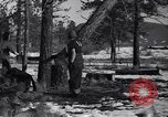 Image of tree cutting contest Luther Washington USA, 1935, second 14 stock footage video 65675041274