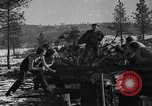 Image of tree cutting contest Luther Washington USA, 1935, second 19 stock footage video 65675041274