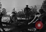 Image of tree cutting contest Luther Washington USA, 1935, second 31 stock footage video 65675041274