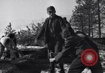 Image of tree cutting contest Luther Washington USA, 1935, second 40 stock footage video 65675041274