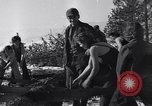 Image of tree cutting contest Luther Washington USA, 1935, second 41 stock footage video 65675041274
