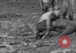 Image of mud wrestling Los Angeles California USA, 1936, second 28 stock footage video 65675041292