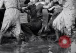 Image of mud wrestling Los Angeles California USA, 1936, second 40 stock footage video 65675041292