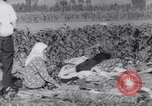 Image of Earthquake Turkey, 1967, second 32 stock footage video 65675041328