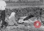 Image of Earthquake Turkey, 1967, second 35 stock footage video 65675041328