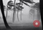 Image of Hurricane Jamaica, 1951, second 19 stock footage video 65675041347