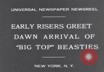Image of Circus New York City USA, 1931, second 2 stock footage video 65675041396