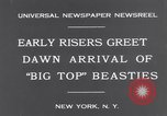 Image of Circus New York City USA, 1931, second 5 stock footage video 65675041396