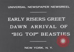 Image of Circus New York City USA, 1931, second 7 stock footage video 65675041396