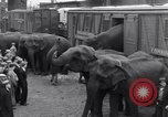 Image of Circus New York City USA, 1931, second 26 stock footage video 65675041396