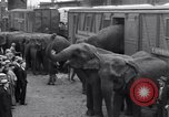 Image of Circus New York City USA, 1931, second 27 stock footage video 65675041396