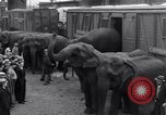 Image of Circus New York City USA, 1931, second 28 stock footage video 65675041396
