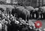 Image of Circus New York City USA, 1931, second 55 stock footage video 65675041396